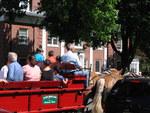 Muddy Brook Farm wagon ride