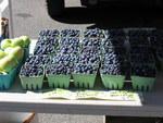 6155Blueberries.jpg