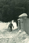 Walking by the Evergreens on a snow-covered sidewalk